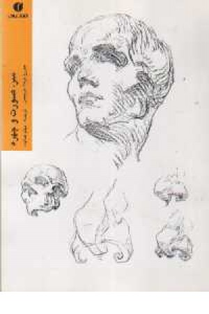 سر ،صورت و چهره