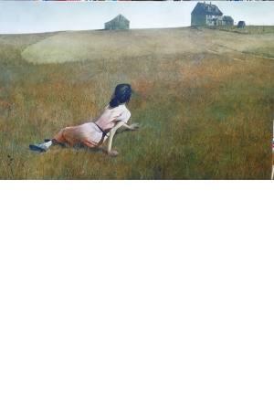 تابلو نقاشی دنیای کریستینا_ اندرو وایت 75*50