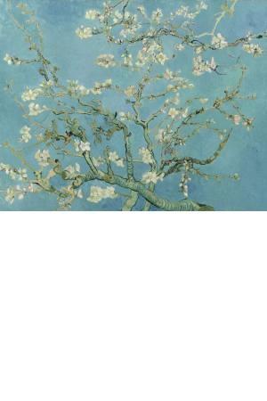 تابلو نقاشی شکوفه بادام