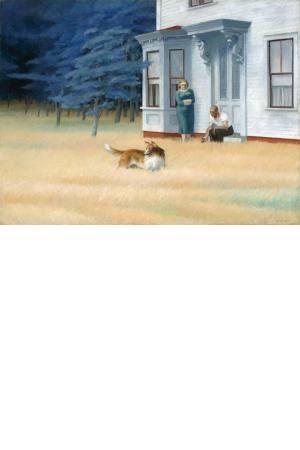 تابلو نقاشی غروب در کیپ کد