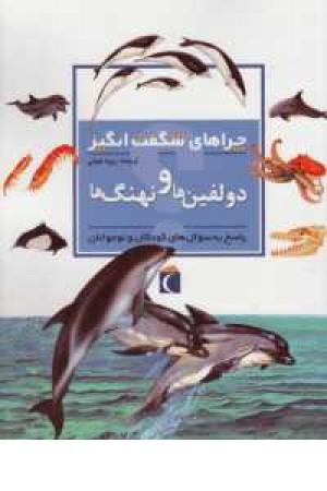 چراهای شگفت انگیز (دلفین ها و نهنگ ها)
