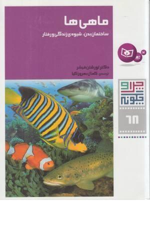 آموزش زبان از طریق موبایل سی دی