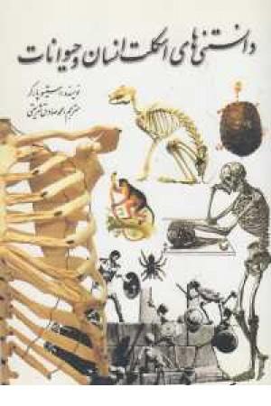 دانستنی های اسکلت انسان و حیوانات
