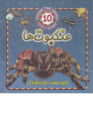 عنکبوت ها (جانور هشت پای خطرناک)